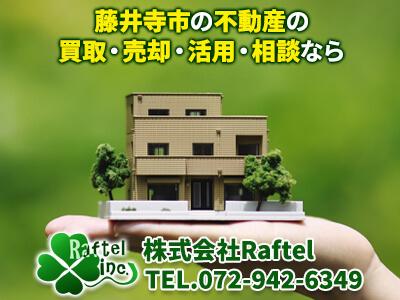 株式会社Raftel(ラフテル)